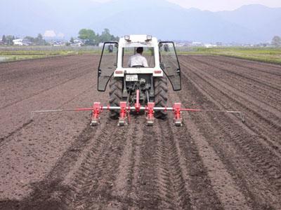 大豆の播種