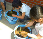 その他の食農教育活動のイメージ
