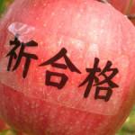 合格祈願りんごのイメージ
